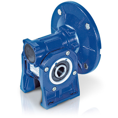Worm gear reducers and combined units