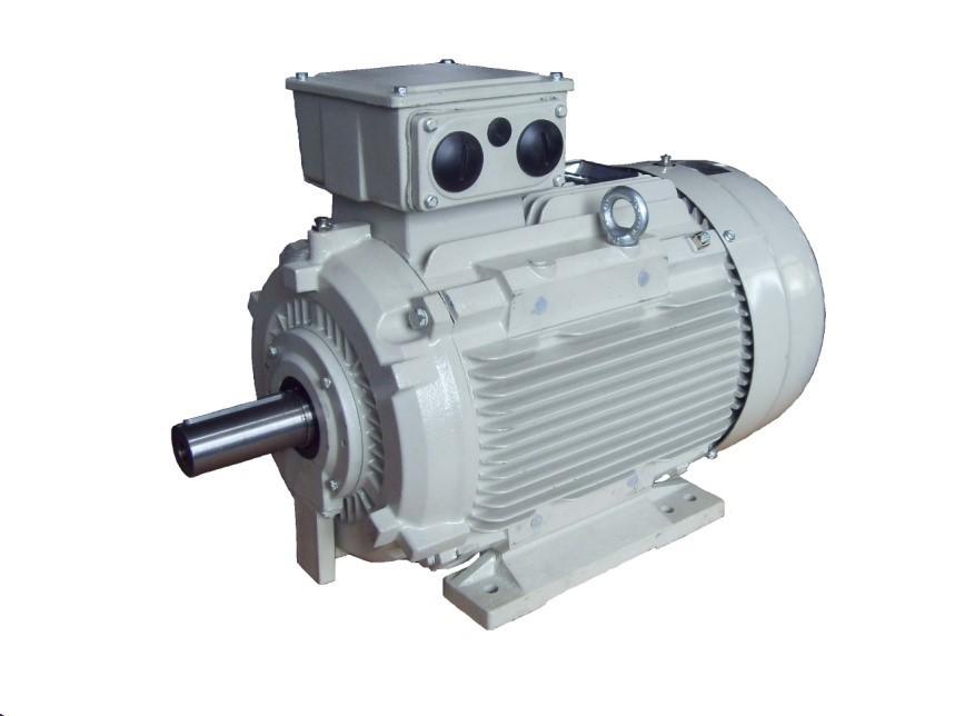 IEC Cast Iron motor - TECO