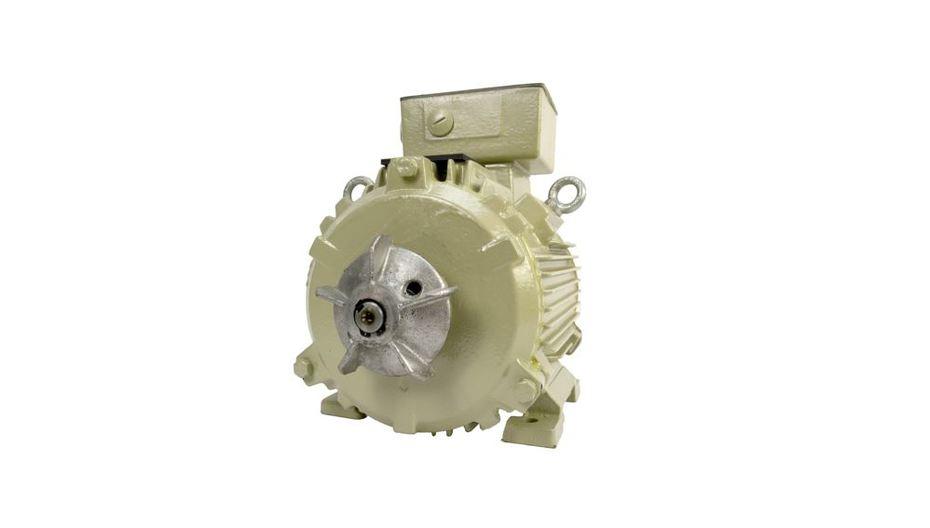 ATEX Cast Iron motor - TECO